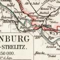 Strelitz
