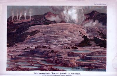Chromolithographie aus 1885 zeigt die Sinterterasse des Tetarata-Sprudels in Neuseeland.