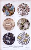 Chromolithographie aus 1885 zeigt Schnitte von 6 Gesteinssorten.