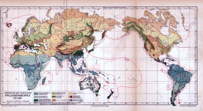 Farbig illustrierte Landkarte der weltweiten Verbreitung der Pflanzengruppen aus 1885.