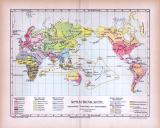 Farbige Lithographie einer Landkarte der Verteilung der Sprachen der Welt aus dem Jahr 1885.