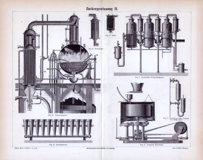 Stich aus 1885 zum Thema Zuckergewinnung.