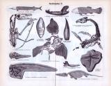 Juraformation I. - III. ca. 1893 Original der Zeit