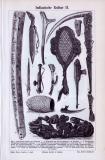 Stich aus 1893 zeigt Objekte aus indianischer Kunst,...