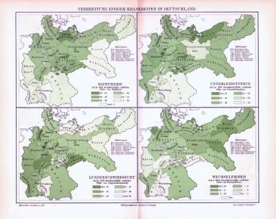 Farbig illustrierte Landkarten zur Verbreitung von Krankheiten in Deutschland aus 1893.