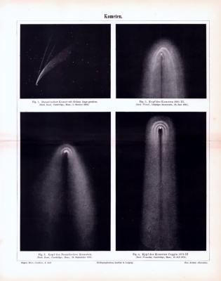 Lithographie aus 1893 zeigt Kometen und deren Schweife.