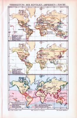 3 farbig illustrierte Weltkarten aus 1893 zeigen die Verbeitung von Reptilien, Amphibien und Fischen.
