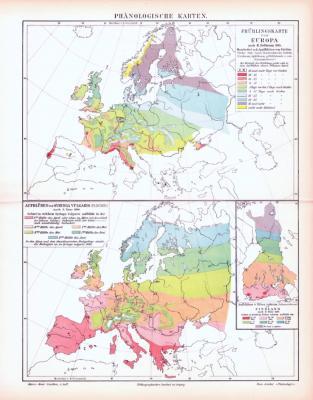 Farbig illustrierte Landkarten von Europa zeigen die Vegetationszeiten verschiedener Pflanzen aus 1893.