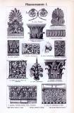 Stich aus 1893 zeigt verschiedene architektonische Pflanzenornamente.
