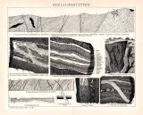 Erzlagerstätten Holzstich 1891 Original der Zeit