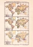 Verbreitung der Thiere II. Karte Lithographie 1890...