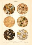 Gesteine historischer Druck Chromolithographie ca. 1904