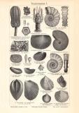 Triasformation I. - II. Holzstich 1908 Original der Zeit