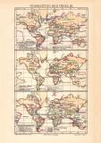 Verbreitung der Vögel III. historische Landkarte...